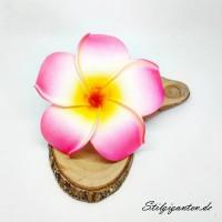 Blume Frangipani pink