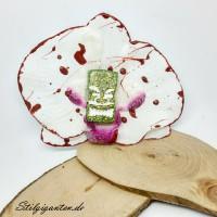 Blume Tiki gruen blutspritzern
