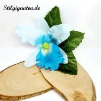 Blume Blau Orchidee klein