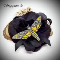 Blume MOTTE