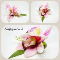 Blume Orchidee Rosa NEU