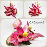 Blume dunkel pinke lilie