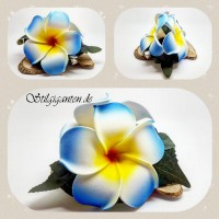 Blume Blaue Frangipani GROSS