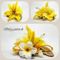 Blume Gelbe lilie