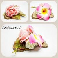 Blume Rosa Rose und grosse Frangipani