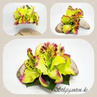 Haarkamm orchideen gruen NEU