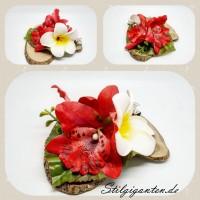 Blume Rot NEU Frangipanie