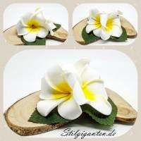 Blume frangipanie weiss gelb 3er